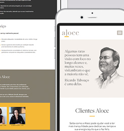 Site Institucional – Alocc